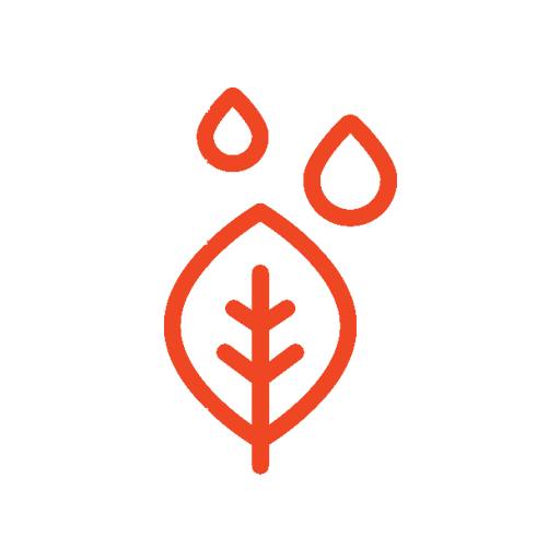 Sustainability - Organic Icon
